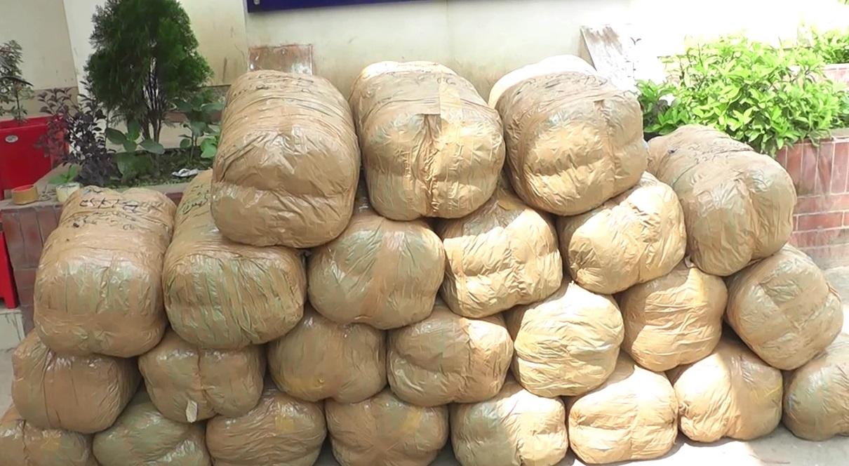 কসবায় ২২০ কেজি গাঁজাসহ পিকআপ ভ্যান আটক
