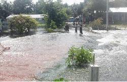 বেড়িবাঁধ ভেঙ্গে রৌমারী উপজেলা শহরে বন্যার পানি প্রবেশ