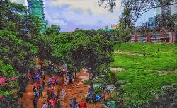 নিস্তব্ধ ক্যাম্পাস, টানা ১৬ দিনের ঈদের  ছুটিতে তিতুমীরের শিক্ষার্থীরা