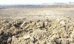 গোদাগাড়ীতে কৃষি জমিতে পুকুর খননের দায়ে ৭ জনের জেল
