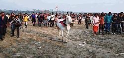 মুজিব বর্ষ উপলক্ষে দোহারে গরুর দৌড় প্রতিযোগিতা