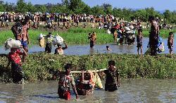 রোহিঙ্গা গণহত্যা মামলার অন্তর্বর্তী রায় পাঠ শুরু