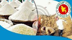 বোরো মৌসুমে সাড়ে ১৭ লাখ টন ধান চাল কিনবে সরকার