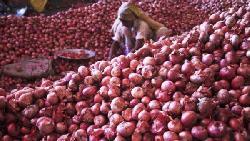 চাঁপাইয়ে পেঁয়াজের দাম সকালে ৫৫ বিকেলে ৭০ টাকা