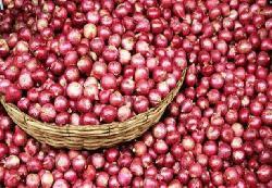 বাংলাদেশে রপ্তানী বন্ধ করায় ভারতের বাজারে পেঁয়াজের দাম কমে গেছে