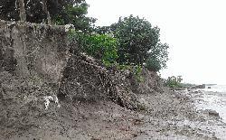 ভয়াল পায়রা নদী : ভাঙ্গন রোধে ব্লক নির্মাণের দাবী