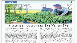 তেতো করলায় মিষ্টি হাসি