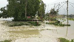 স্রোতে ভেসে গেল কালভার্ট, বিচ্ছিন্ন ৩০ গ্রামের যোগাযোগ