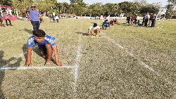 মাশরাফির উদ্যোগে নড়াইলে অ্যাথলেটিকস প্রতিযোগিতা