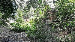 বাসাইলে সরকারি রাস্তা দখল করে বসতভিটা নির্মাণের অভিযোগ