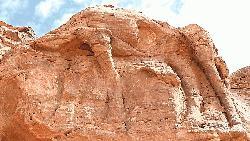 ৮ হাজার বছর আগের উটের ভাস্কর্য